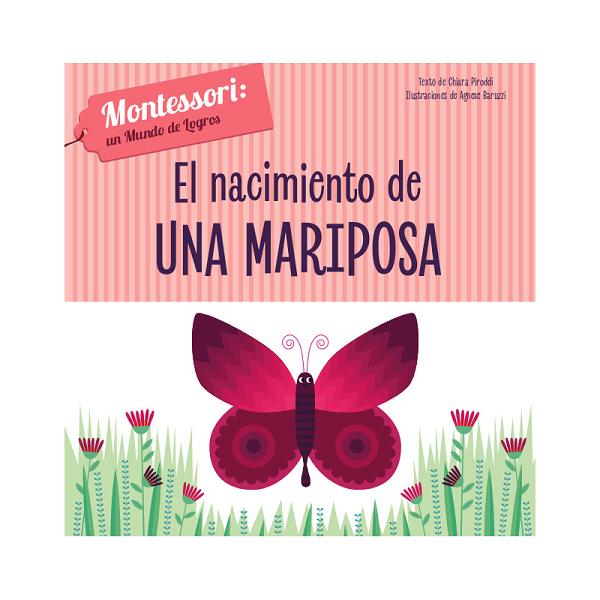 Montessori el nacimiento de una mariposa